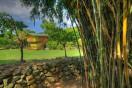 bambo-room1